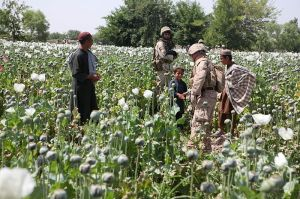 Marines greet children in a field of poppies